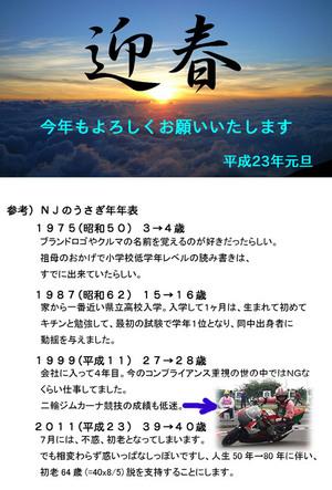 Nyc_2011_blog
